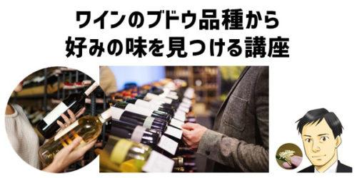 ワインのブドウ品種から好みの味を見つける講座